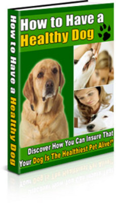 Product picture How To Have A Healthy Dog